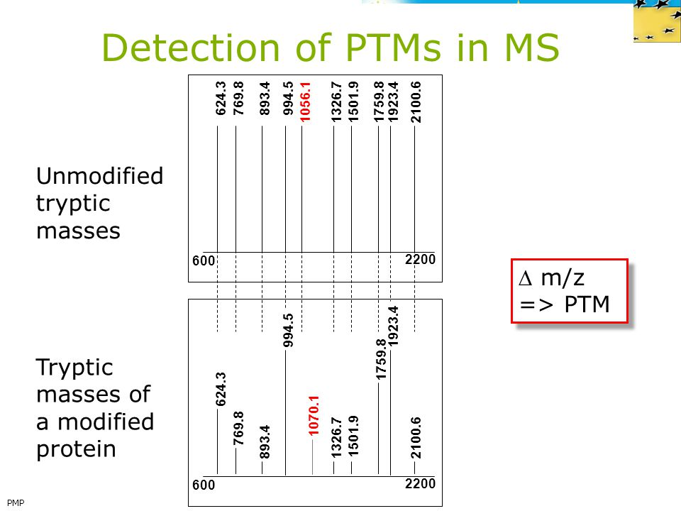 Detection of PTMs in MS Unmodified tryptic masses  m/z => PTM