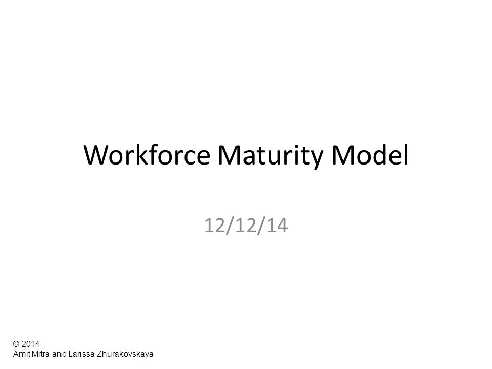 Workforce Maturity Model