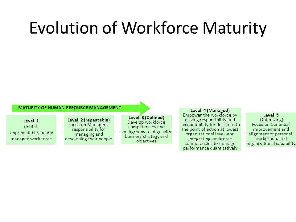 Evolution of Workforce Maturity