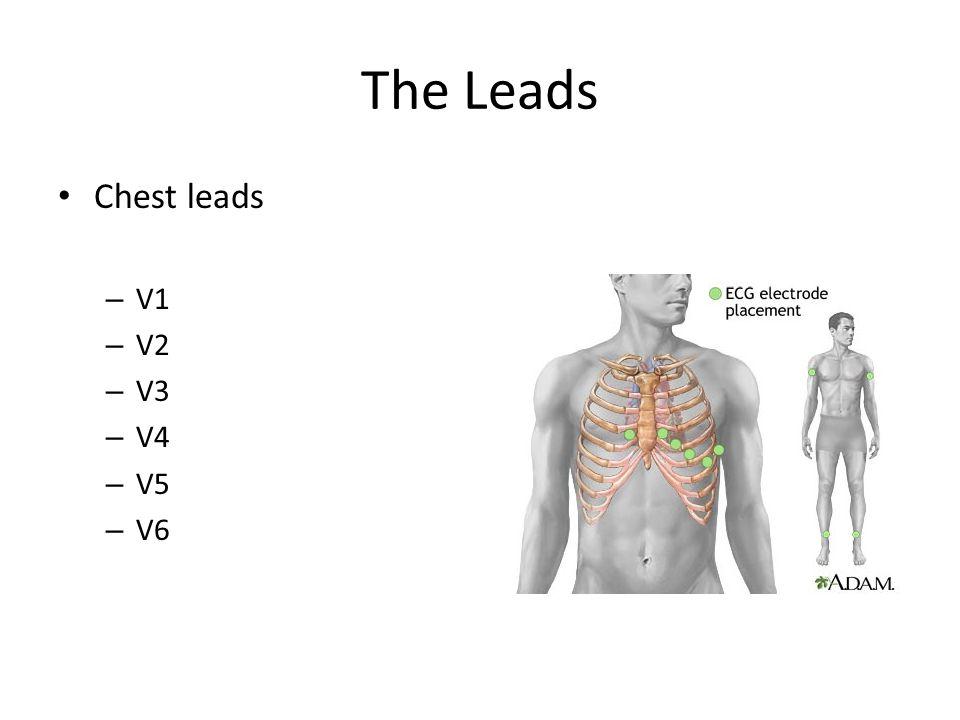 The Leads Chest leads V1 V2 V3 V4 V5 V6
