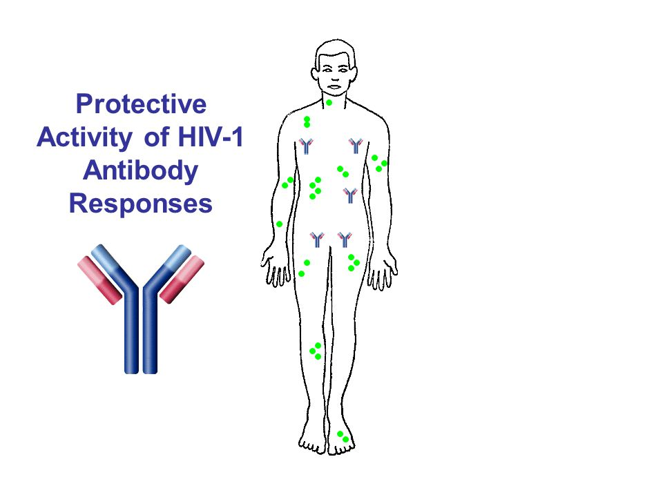 Protective Activity of HIV-1 Antibody Responses