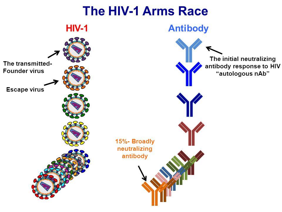 The HIV-1 Arms Race HIV-1 Antibody