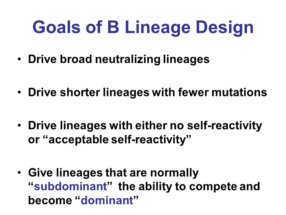 Goals of B Lineage Design
