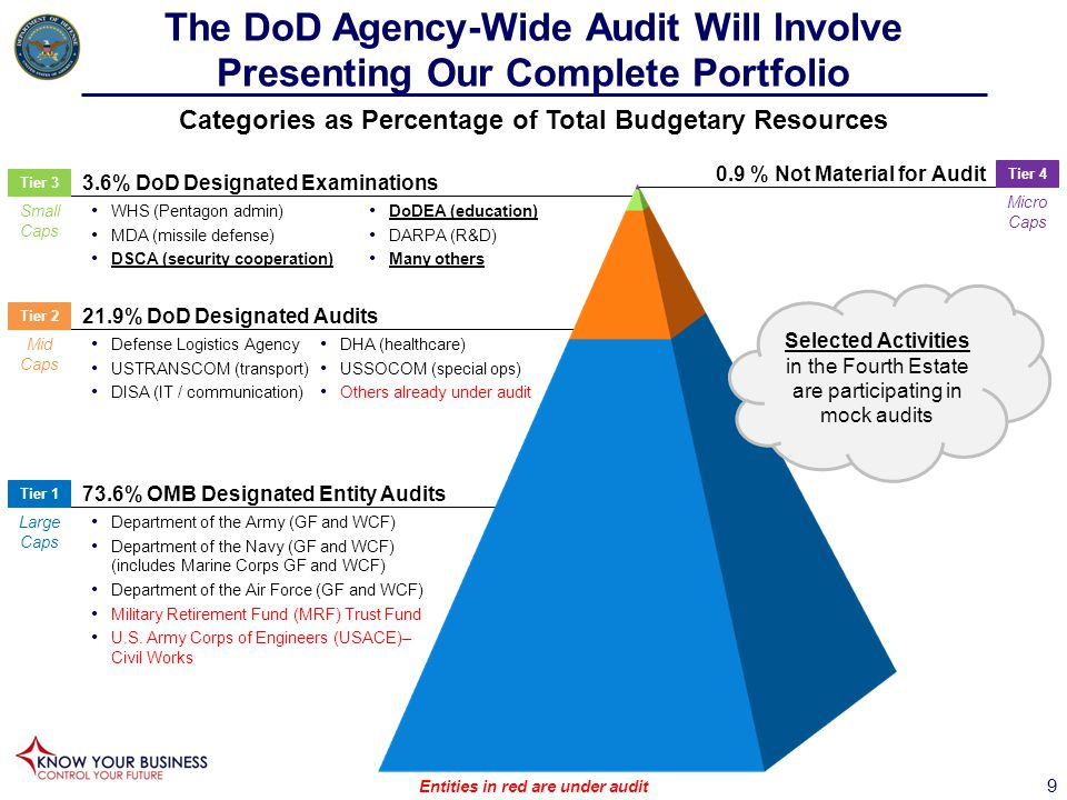 The DoD Agency-Wide Audit Will Involve