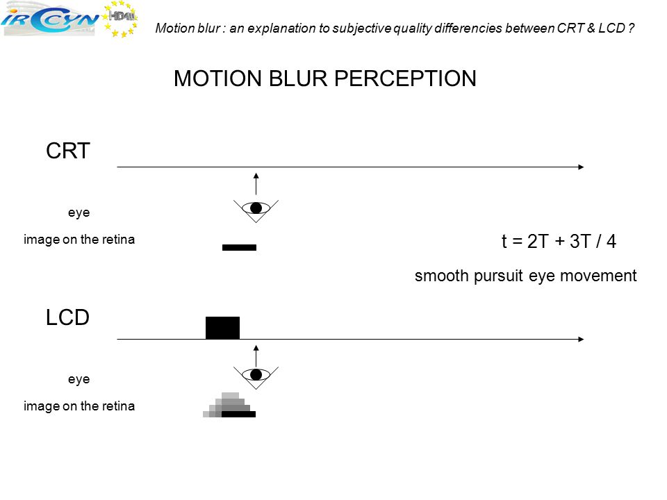 MOTION BLUR PERCEPTION