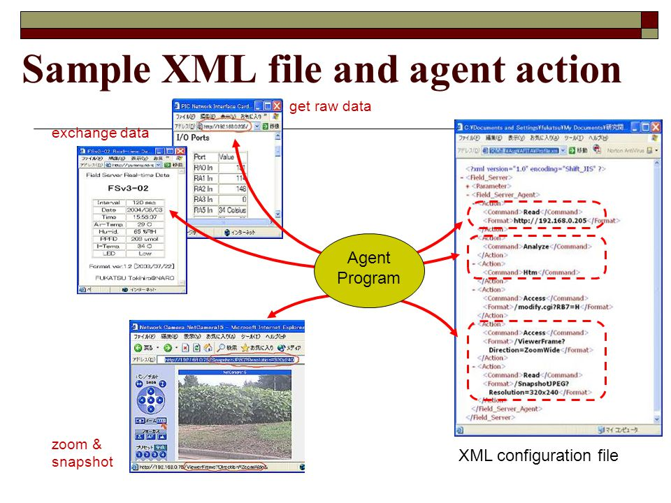 Sample XML file and agent action