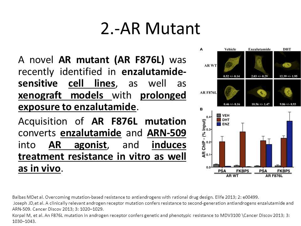 2.-AR Mutant