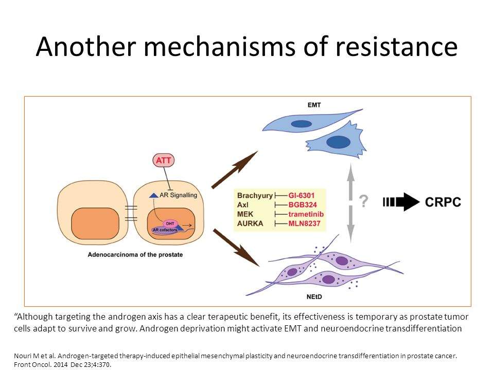 Another mechanisms of resistance