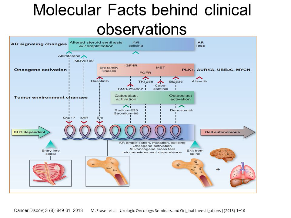 Molecular Facts behind clinical observations