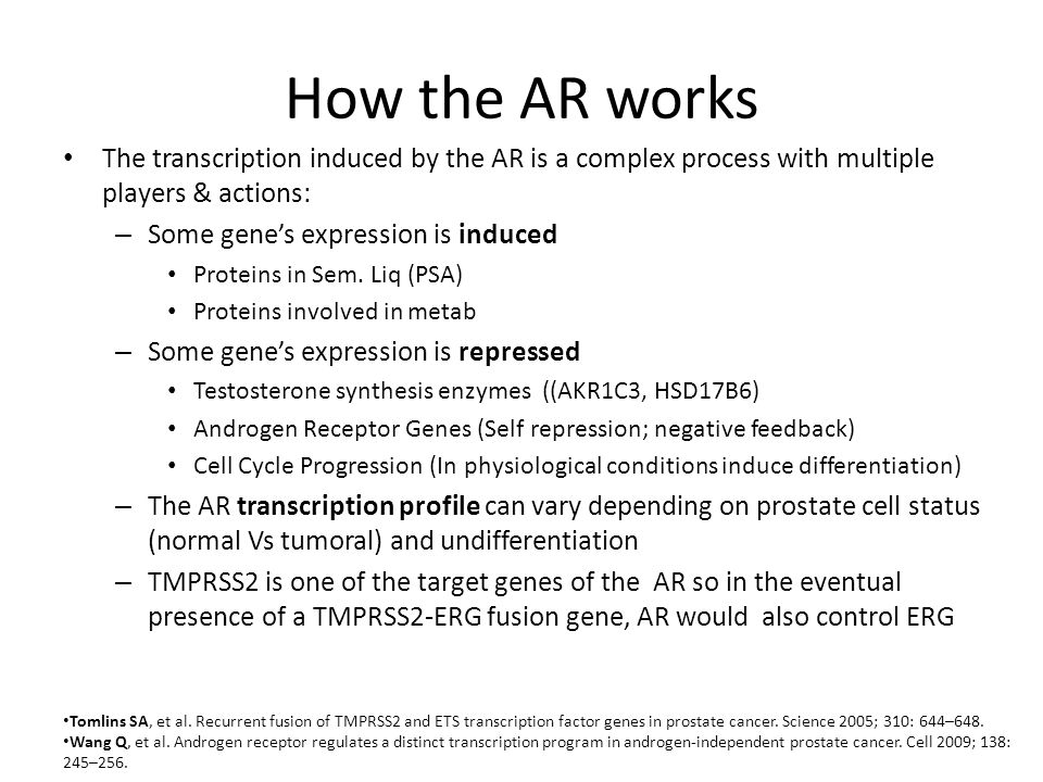 How the AR works The transcription induced by the AR is a complex process with multiple players & actions: