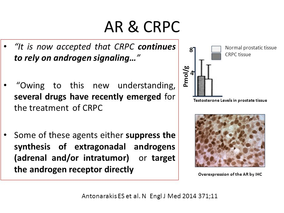 AR & CRPC It is now accepted that CRPC continues to rely on androgen signaling…