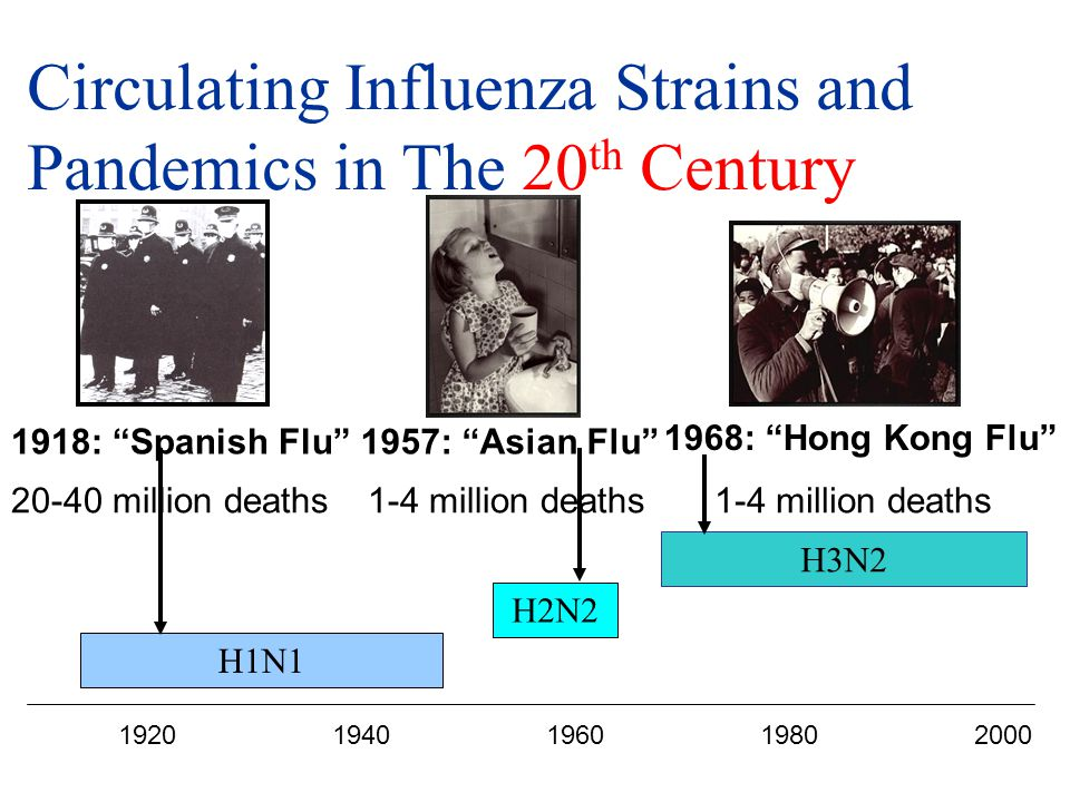 Circulating Influenza Strains and Pandemics in The 20th Century