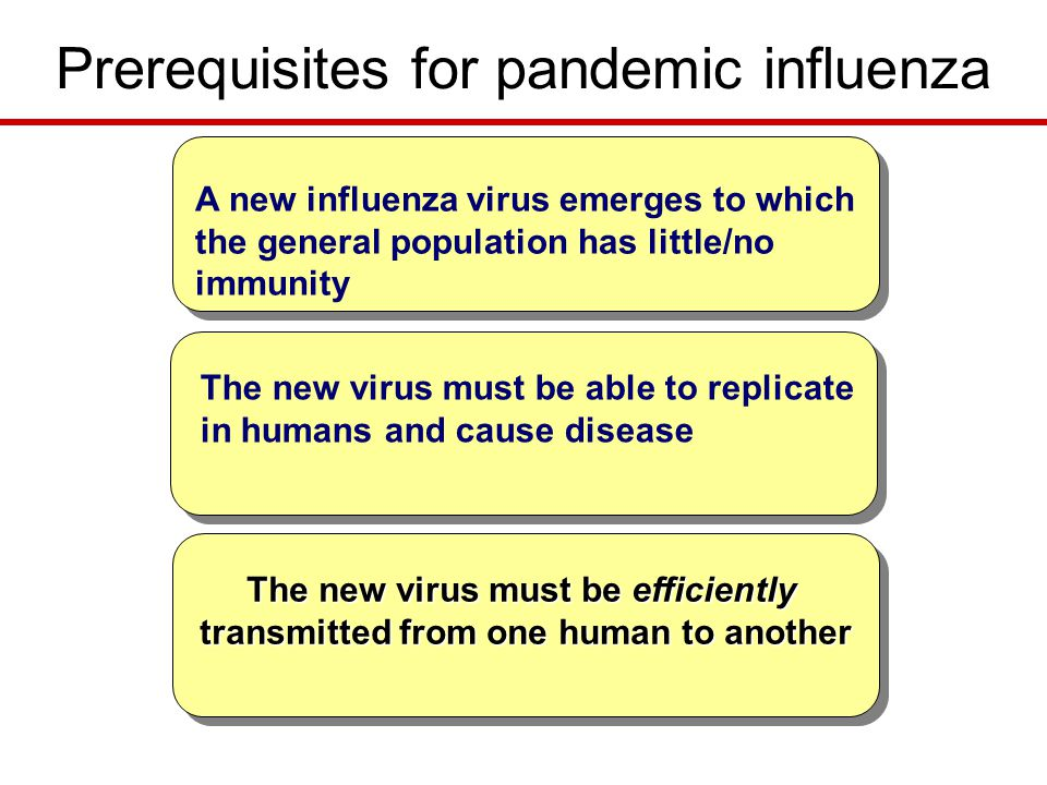 Prerequisites for pandemic influenza