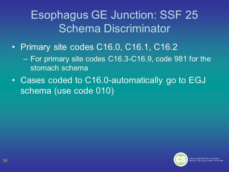 Esophagus GE Junction: SSF 25 Schema Discriminator