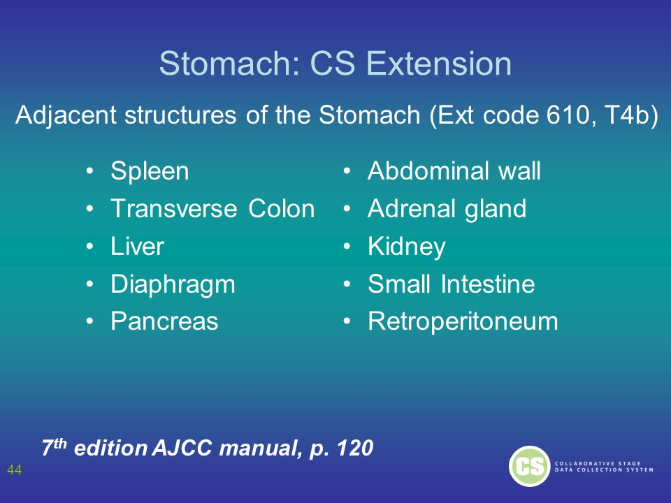 Stomach: CS Extension Adjacent structures of the Stomach (Ext code 610, T4b) Spleen. Transverse Colon.