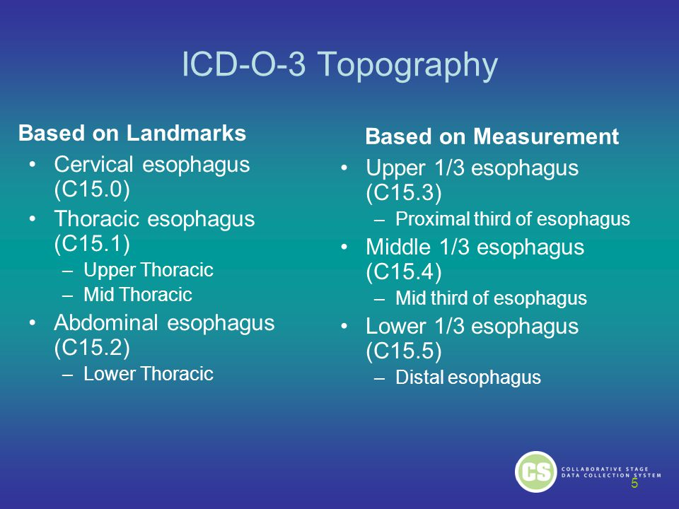 ICD-O-3 Topography Based on Landmarks Based on Measurement