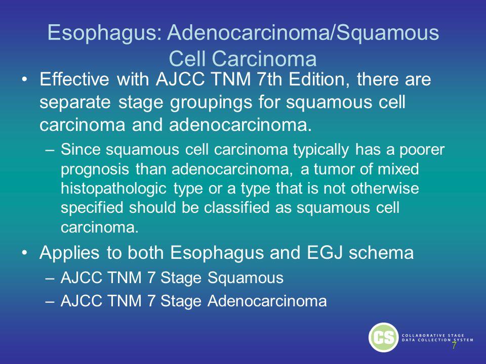 Esophagus: Adenocarcinoma/Squamous Cell Carcinoma