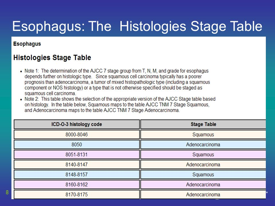 Esophagus: The Histologies Stage Table