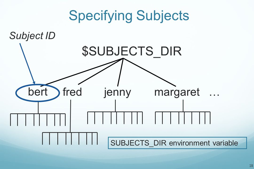 Specifying Subjects $SUBJECTS_DIR fred jenny margaret … bert