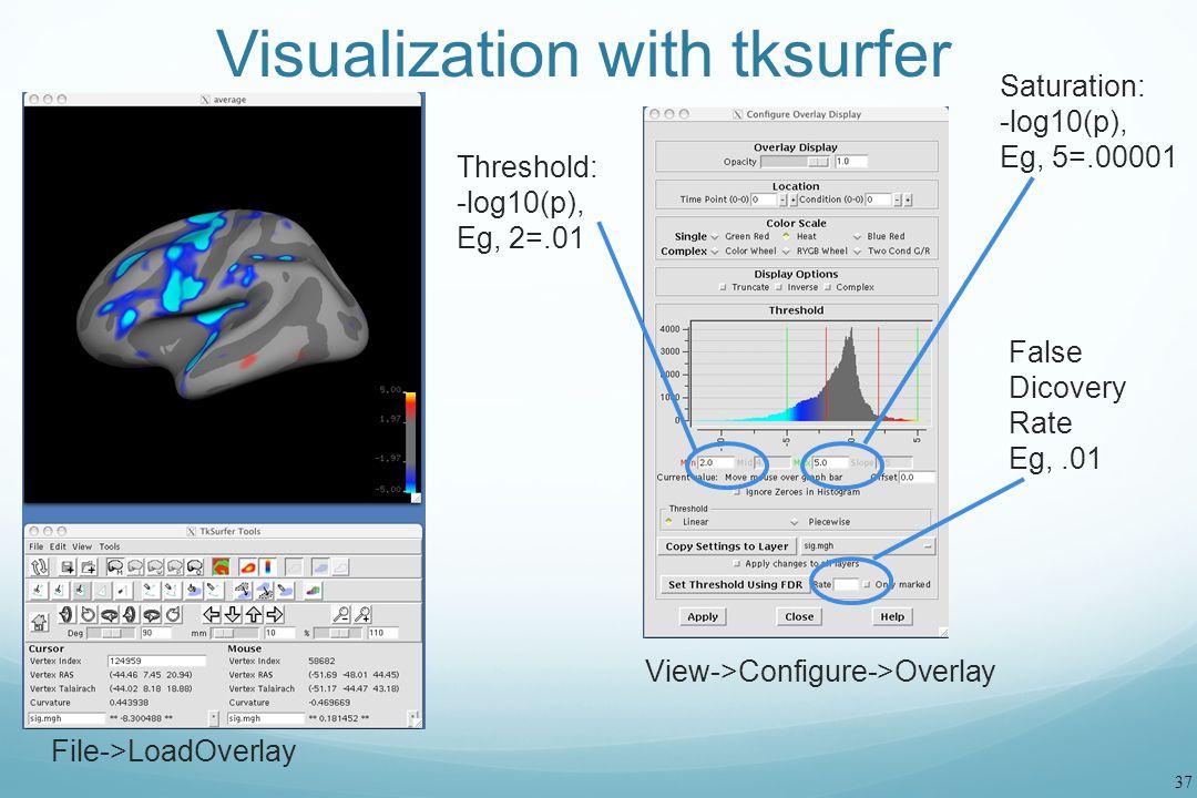 Visualization with tksurfer