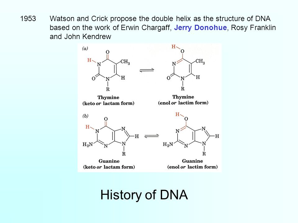 1953 Watson and Crick propose the double helix as the structure of DNA