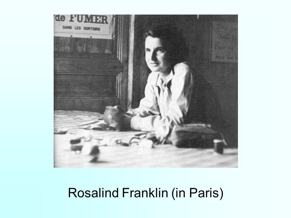 Rosalind Franklin (in Paris)