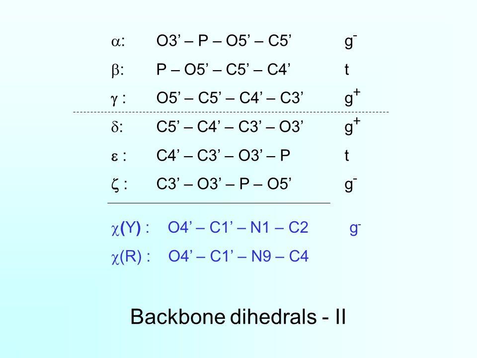 Backbone dihedrals - II