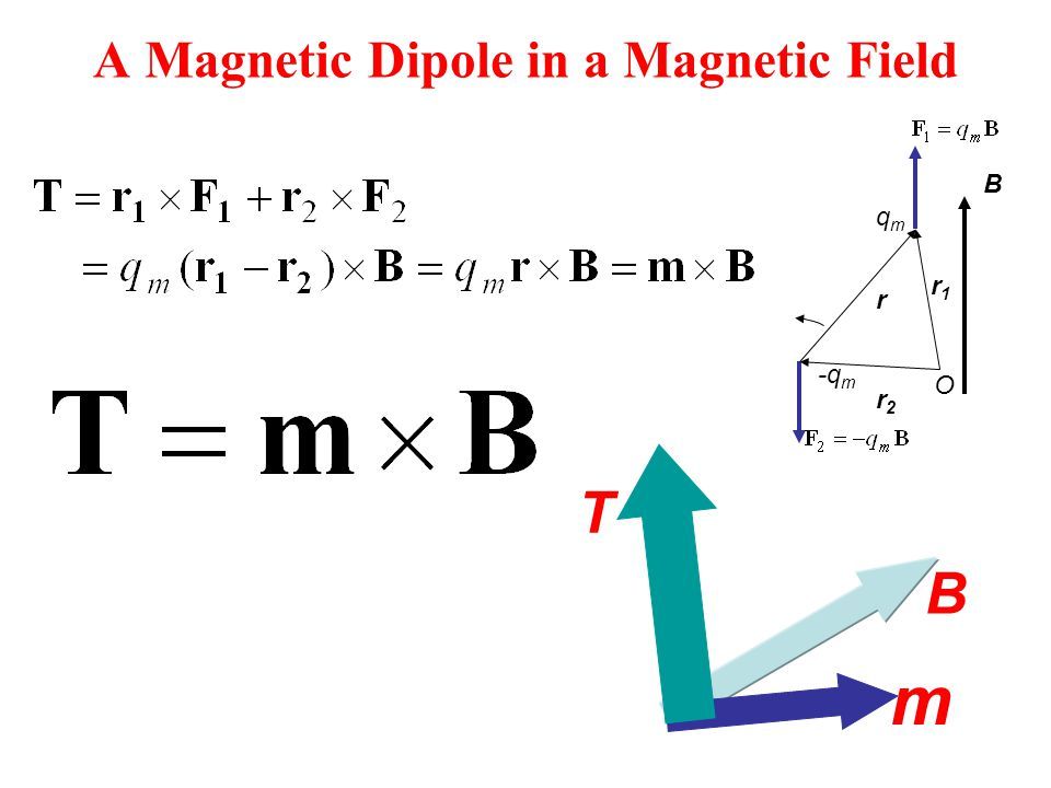 A Magnetic Dipole in a Magnetic Field