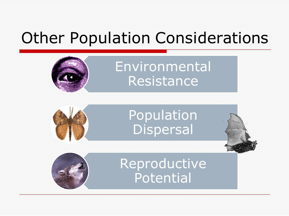 Other Population Considerations