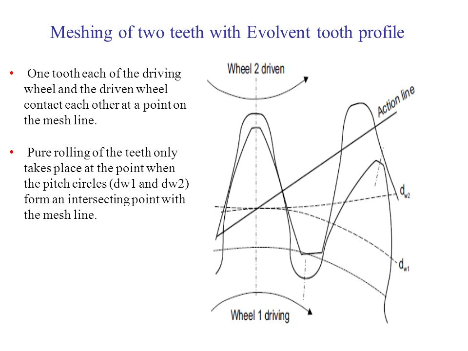 Meshing of two teeth with Evolvent tooth profile