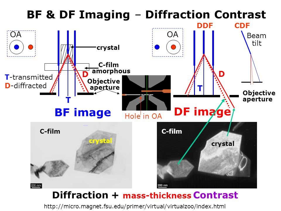 BF & DF Imaging – Diffraction Contrast