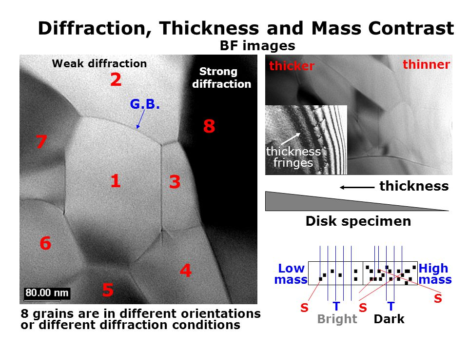 Diffraction, Thickness and Mass Contrast