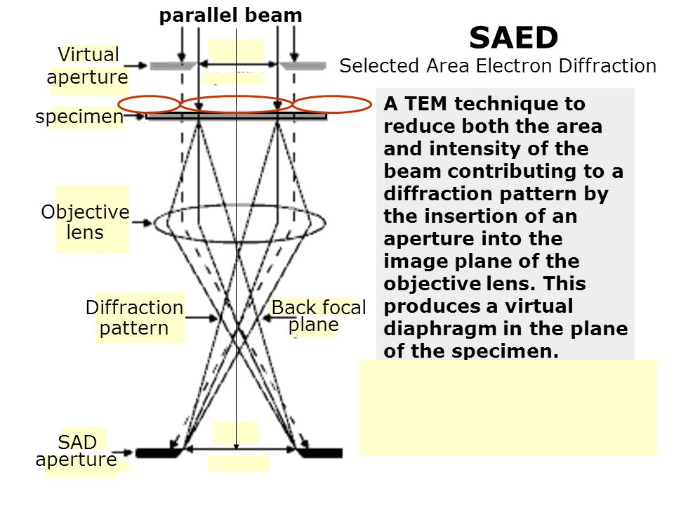 parallel beam SAED.