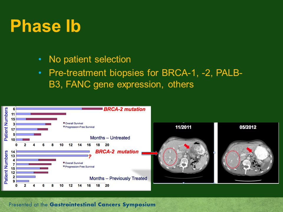 Phase Ib No patient selection