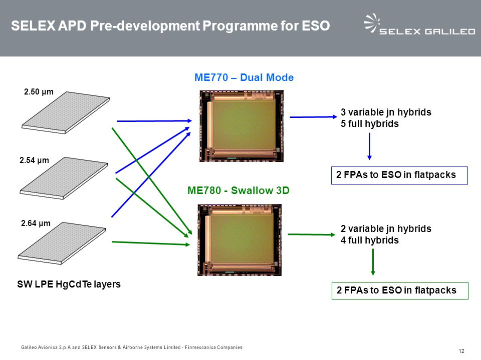 SELEX APD Pre-development Programme for ESO