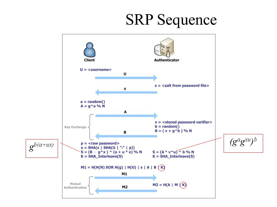 SRP Sequence (gagxu)b gb(a+ux)
