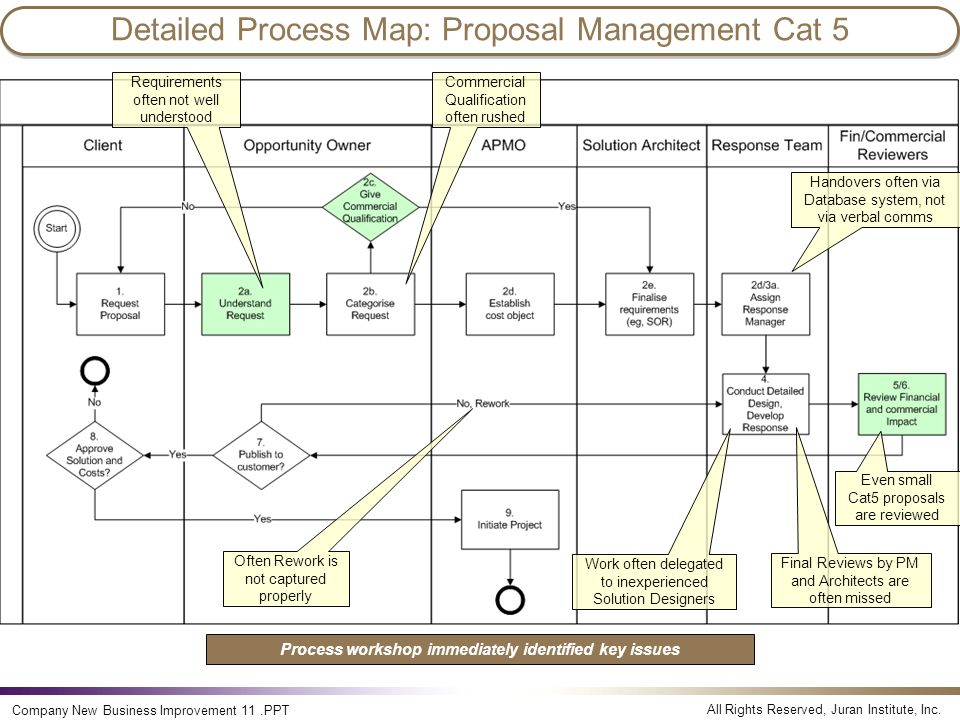 Detailed Process Map: Proposal Management Cat 5