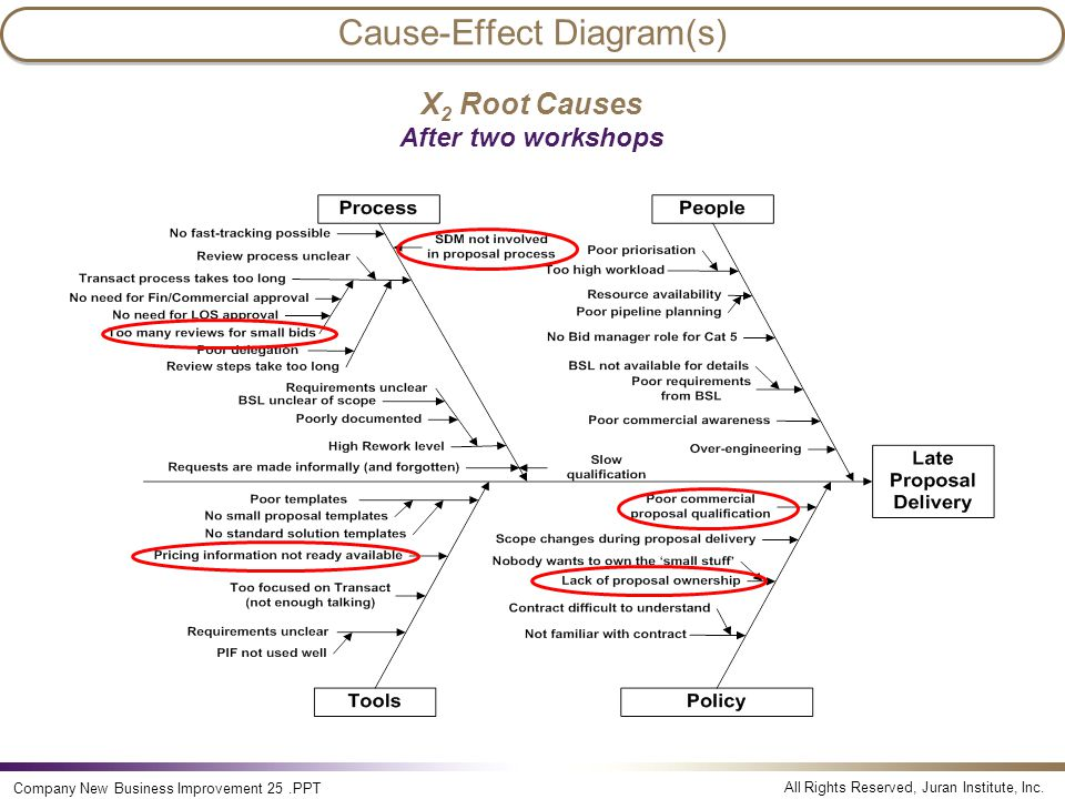 Cause-Effect Diagram(s)