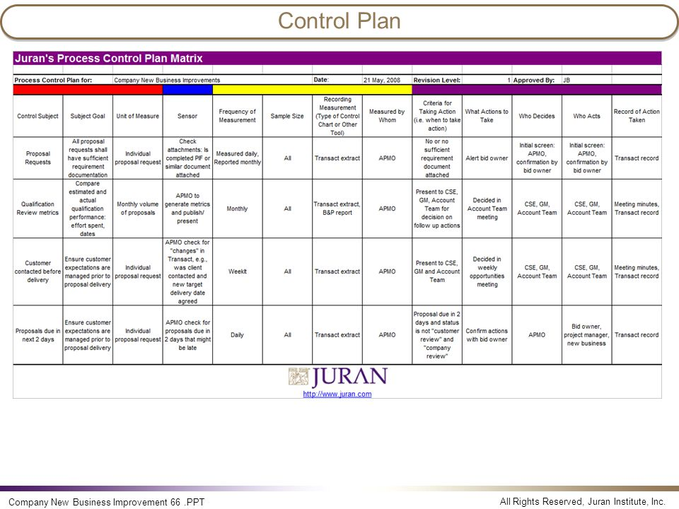Control Plan Company New Business Improvement 66 .PPT