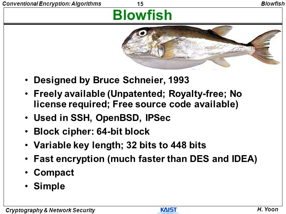 Blowfish Designed by Bruce Schneier, 1993
