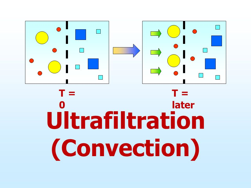 Ultrafiltration (Convection)