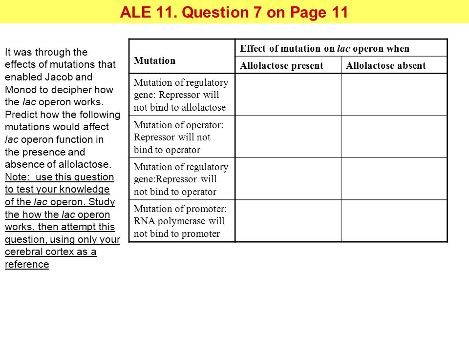 ALE 11. Question 7 on Page 11 Mutation