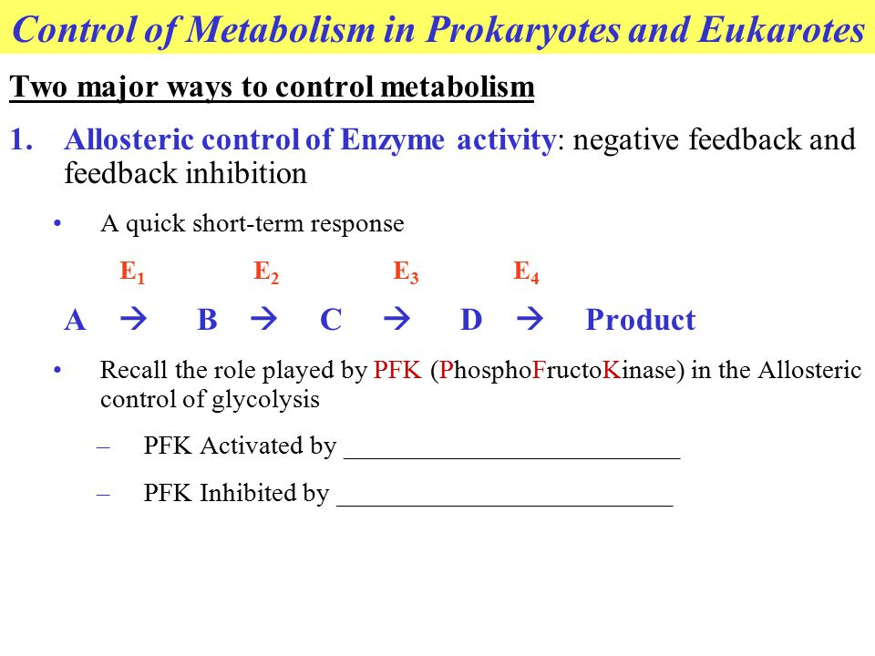 Control of Metabolism in Prokaryotes and Eukarotes