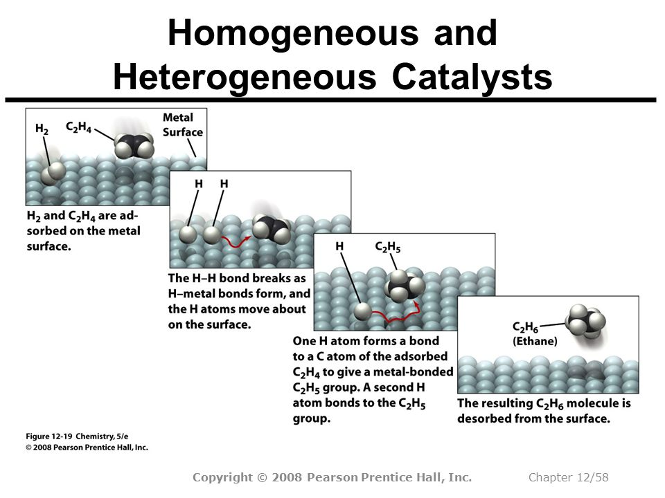 Homogeneous and Heterogeneous Catalysts
