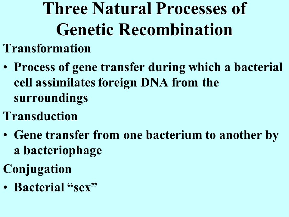 Three Natural Processes of Genetic Recombination