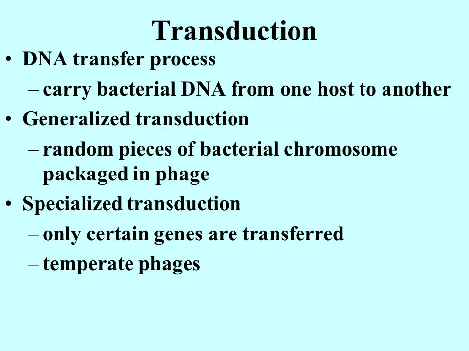 Transduction DNA transfer process