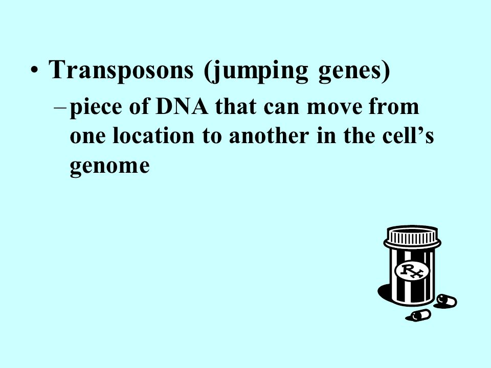 Transposons (jumping genes)