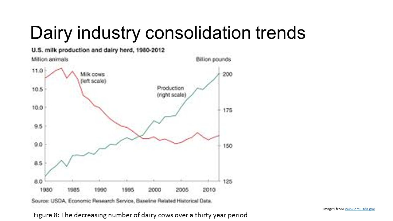 Dairy industry consolidation trends