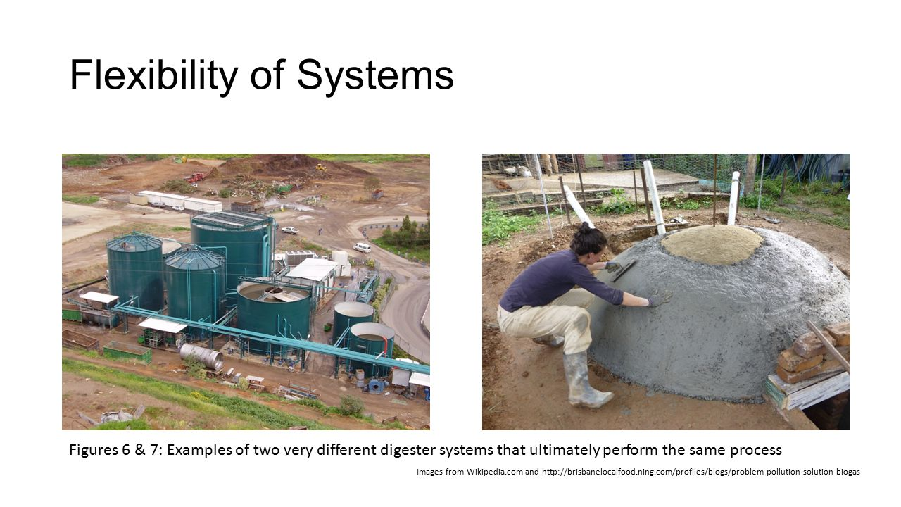 Flexibility of Systems