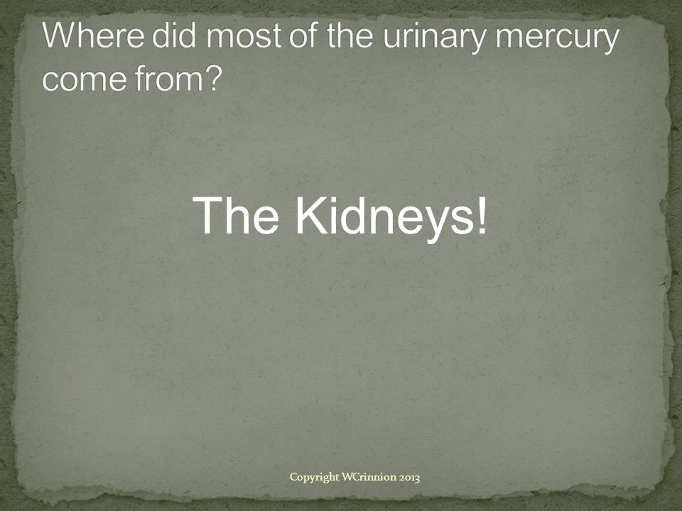 Where did most of the urinary mercury come from